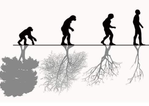 parasite-earth-walk